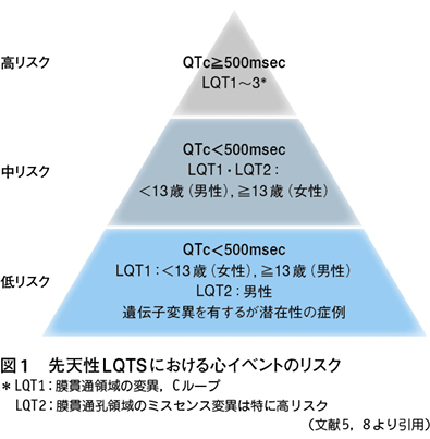 2)エビデンスに基づくQT延長症候群のリスク評価[特集:QT延長症候群 ...
